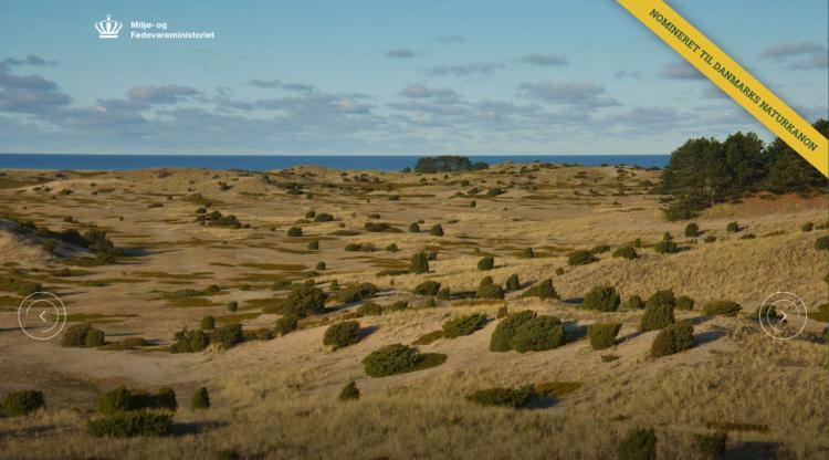 Digital borgerinvolvering omkring Danmarks Naturkanon